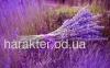 Ширма с фотопечатью под заказ ША Фотопечать ширма с цветами 2
