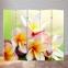 Ширма декоративная Природа 3-х, 4-х, 5 створчатые ШВ 24