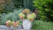 Кашпо для цветов Контейнер 46 см 105539, 36 см 105538 кс 0