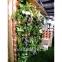 вертикальные сады (белые или коричневые) 2