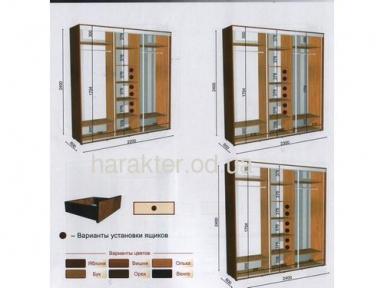 Шкаф купе длиной 2,2/2,3/2,4м глубиной 0,6м или 0,45м высотой 2,4м