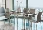 Стол стеклянный, раздвижной GD-018 сл