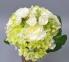 Букет из роз и гортензии SUB023. ат