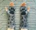 Митенки (перчатки без пальцев) ручной работы высокие Рысь