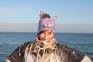 Валяная, эмоциональная шапочка из шерсти Зебра с ушками, хенд-мейд